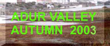 Adur Valley Nature Notes  October - December 2002