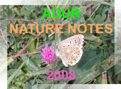 Link to the Adur Nature Notes 2008 web pages