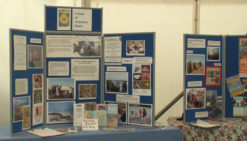 FOSB: Friends of Shoreham Beach Display