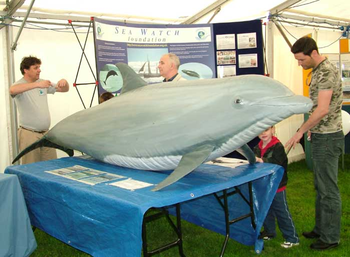 Steve Savage and Marc Baldwin with the Sea Watch Foundation Dolphin Display (Photograph by Ray Hamblett)