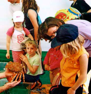 Link to an on-line page for younger students of the seashore. Spider Crab and youngsters at Adur World Oceans Day 2002 (Photograph by Duncan Morrison)