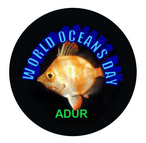 Link to the WORLD OCEANS DAY web page