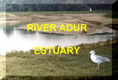 Link to the Adur tidal reaches habitats web page