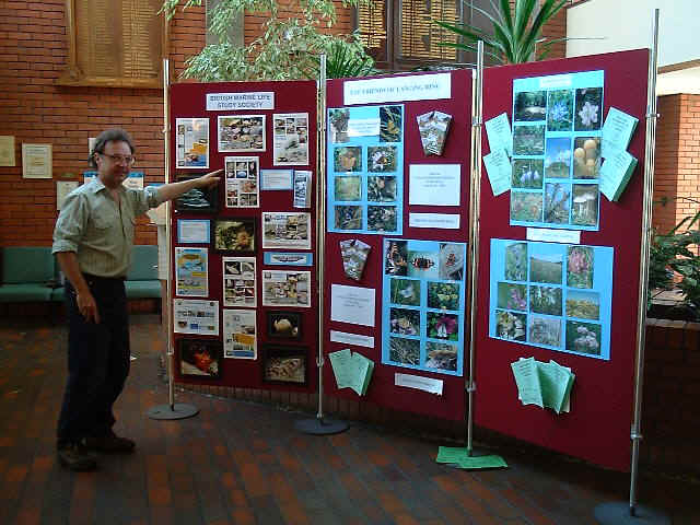 Displays by the British Marine Life Study Society and friends of Lancing Ring