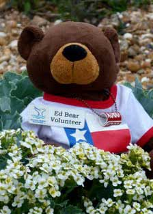 Eddy the Bear Blogspot