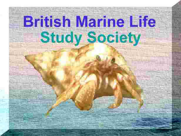 British Marine Life Study Society  (formed 6 June 1990)