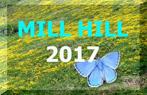 Link to the Mill Hill Nature Notes 2017 web pages