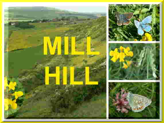 Link to the Mill Hill web page for 2009
