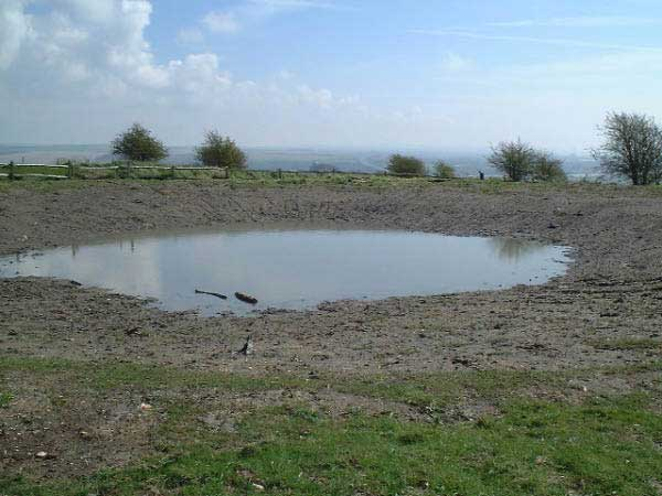 Lancing Ring Dewpond (Photograph by Ray Hamblett)