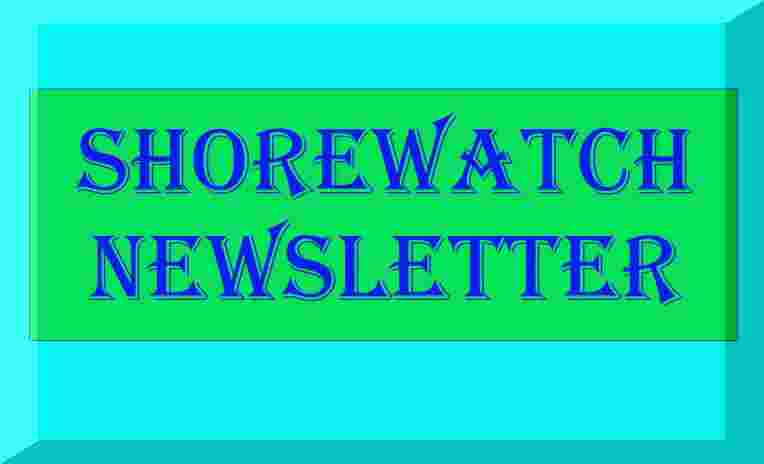 SHOREWATCH NEWSLETTER