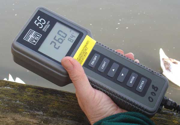 The electronic meter for measuring salinity and water temperature
