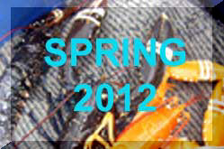 Spring 2012 News Reports (Links)