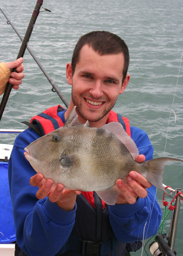 Triggerfish caught by Tom Bagnall