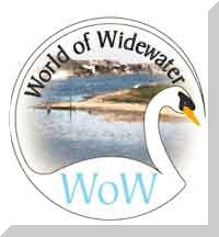 Link to information about World of Widewater (Community Friends Group)