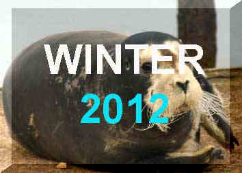 Winter 2012 News Reports, January - March