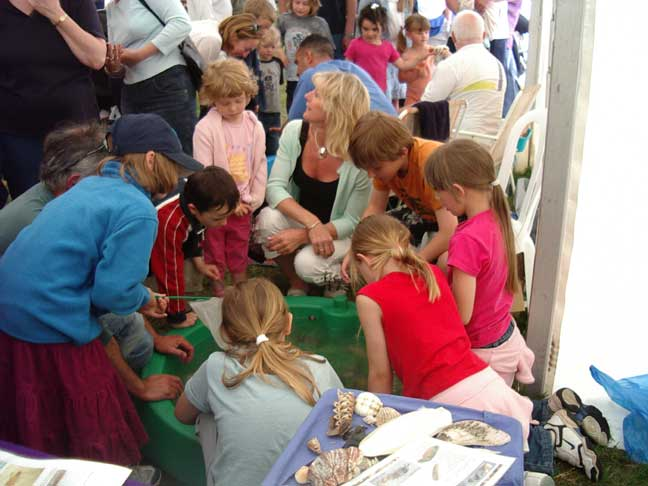 Crowds of children around Katherine Hamblett's live crab pond dipping exhibit.