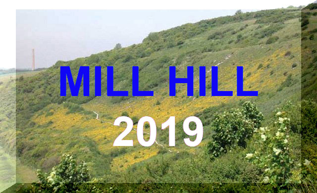 Mill Hill Reports 2019