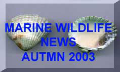 Link to Autumn 2003 News Page