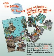 Link to the Sealife Survey on facebook (Marine Biological Assoc. of the Uk.)
