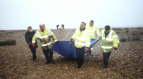 Adur Council workers using the standard tarpaulin method for removing a Common Dolphin from Shoreham beach 2001