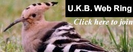 UK Birding Web Ring   Click here to join
